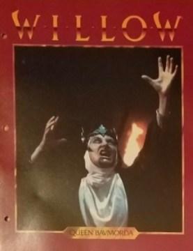 Willow Folder 4