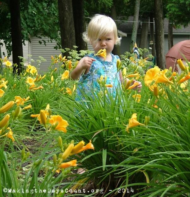 olivia_lilies1