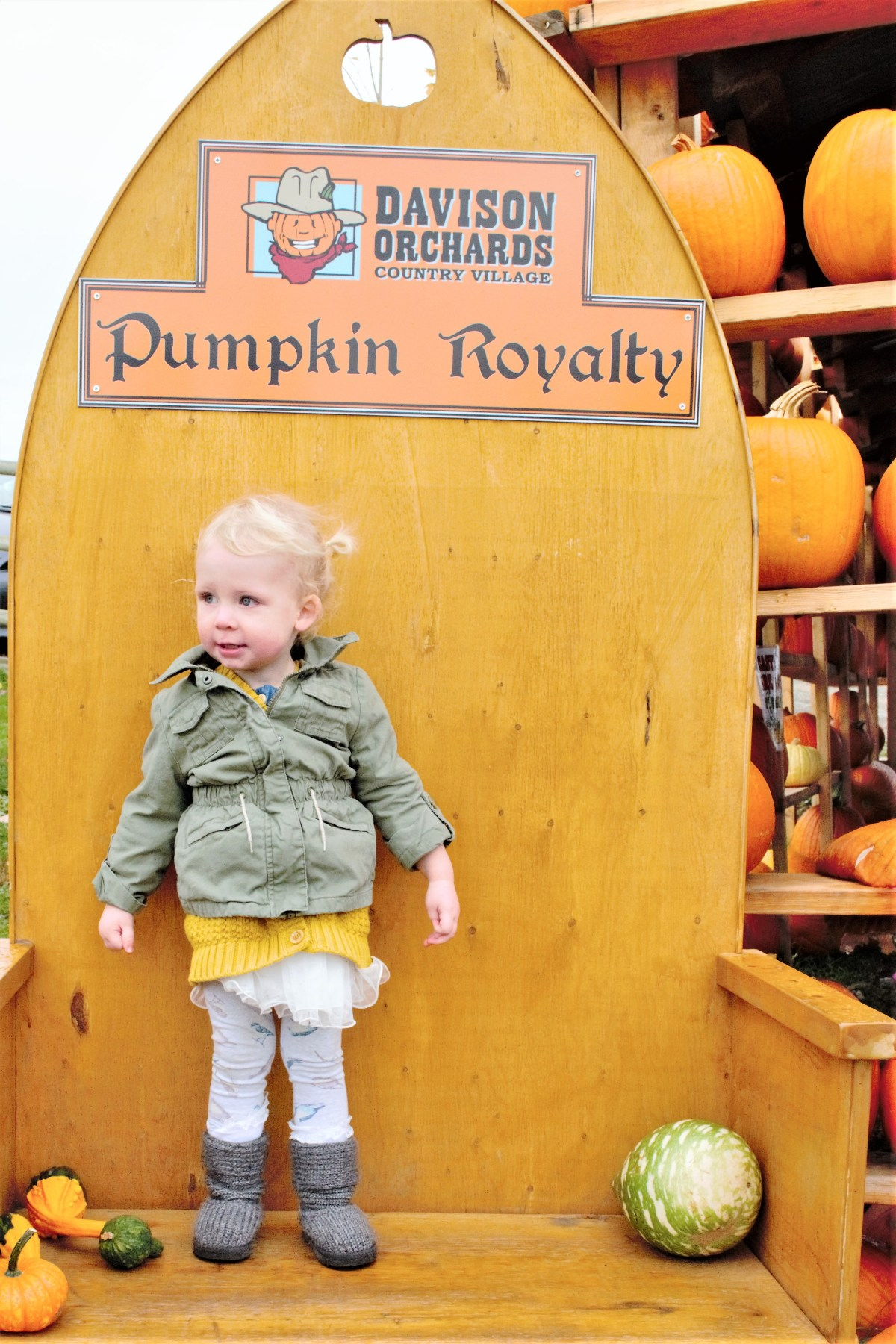 Davidson Orchard Adventure - pumpkin Royalty
