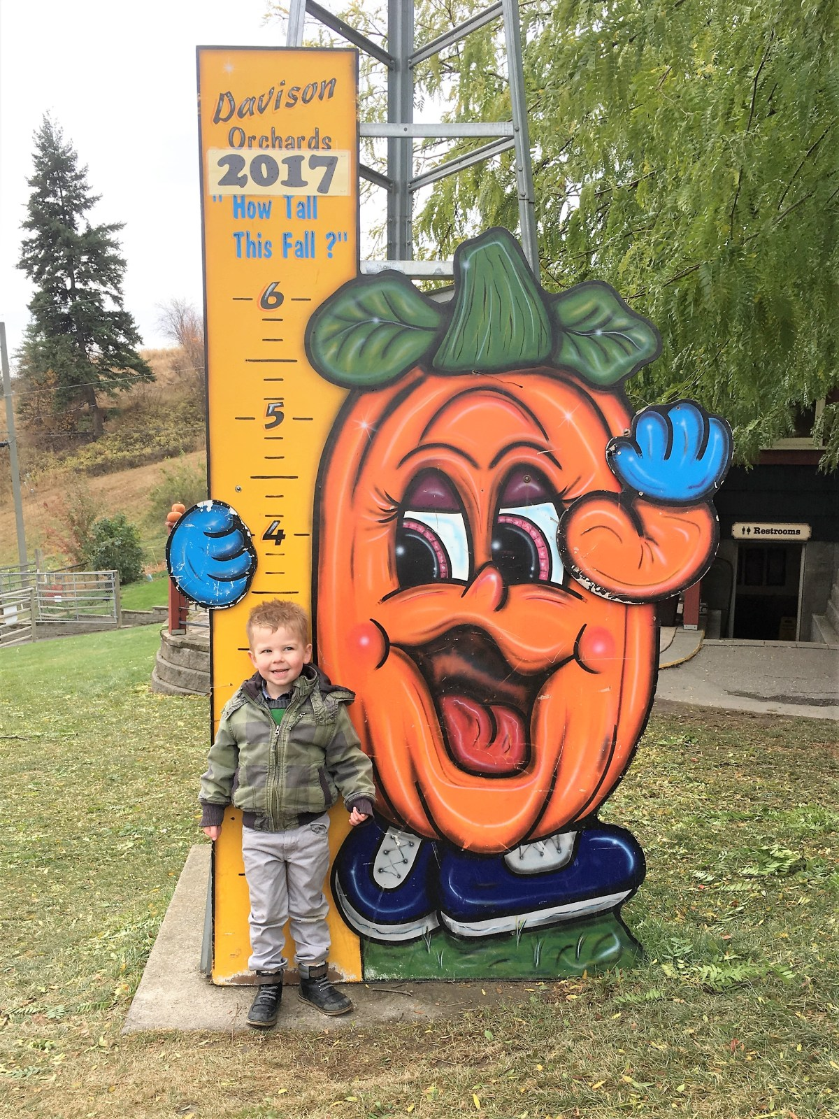 Davidson Orchard Adventure - how tall this fall?