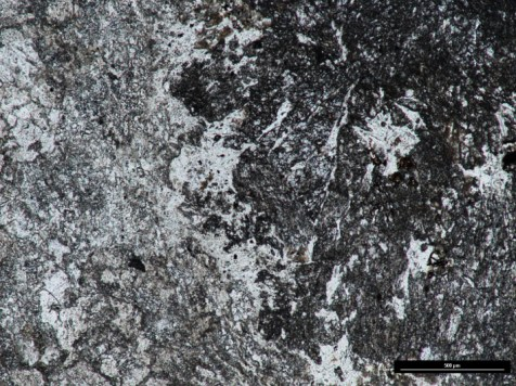 Thin section (ppl) of Connemara Marble (Streamstown quarry)