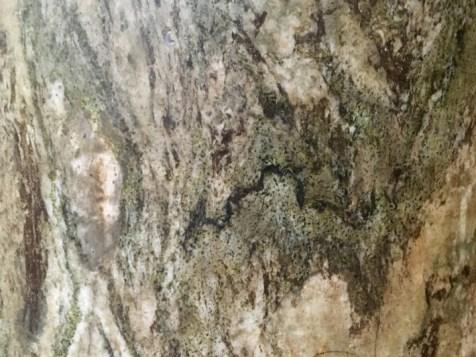 Surface image of Connemara Marble column (Streamstown)