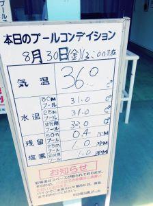 2013年8月30日の和田掘りプール