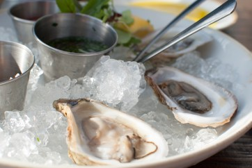 oysters_4