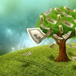 不動産投資お金のなる木