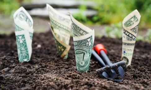 不動産投資種撒き