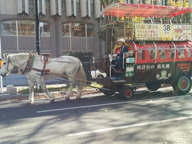 札幌の馬車