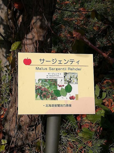 弘前市りんご公園