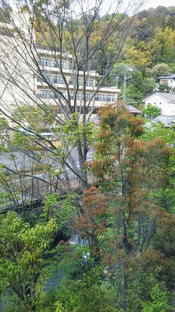 エクシブ湯河原離宮 窓からの景色