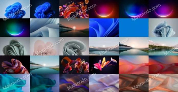 Windows 11 Wallpapers Download (HD, 2K, 4K, 5K Resolutions)
