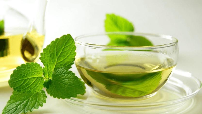 teh daun mint mengobati sakit perut anak