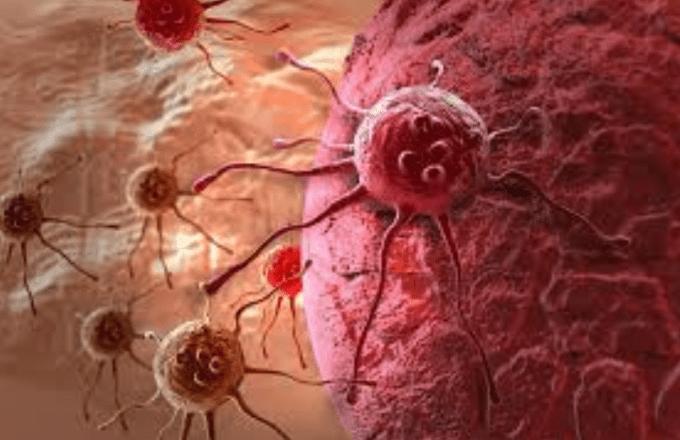 manfaat lada putih untuk obat kanker