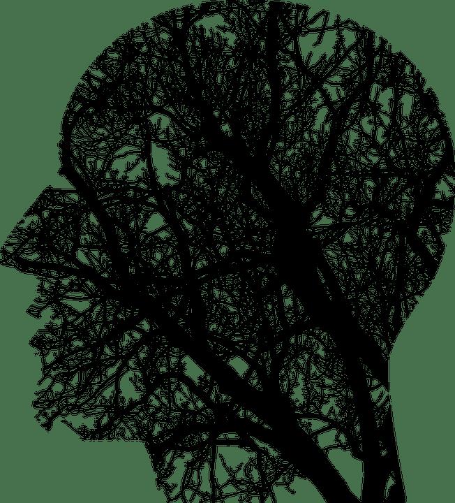 Mindfullness Training - Mako Athletics