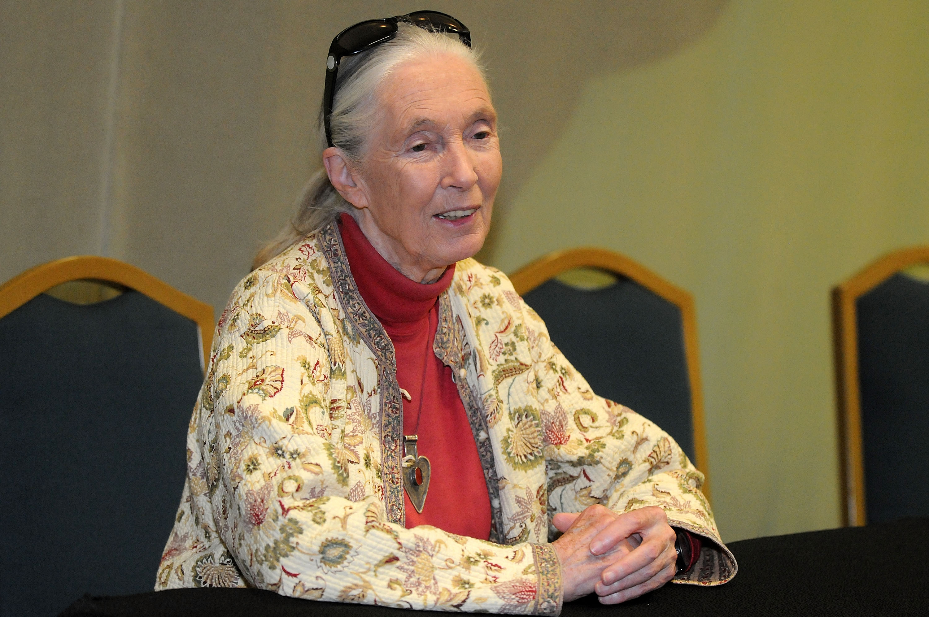 Dr. Jane Goodall Is A Timeless Role Model