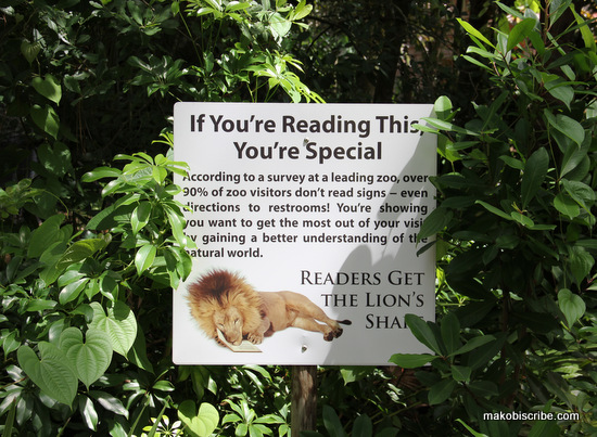 reading at the zoo