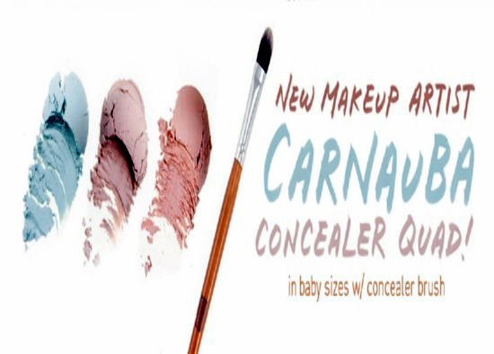 Eco Friendly Makeup Concealer From Everyday Minerals Sweepstakes ⋆ Makobi Scribe