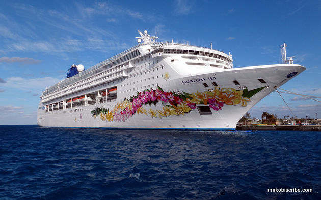 3 Essentials For Your Cruise To Paradise #Dramamine #CG ⋆ Makobi Scribe