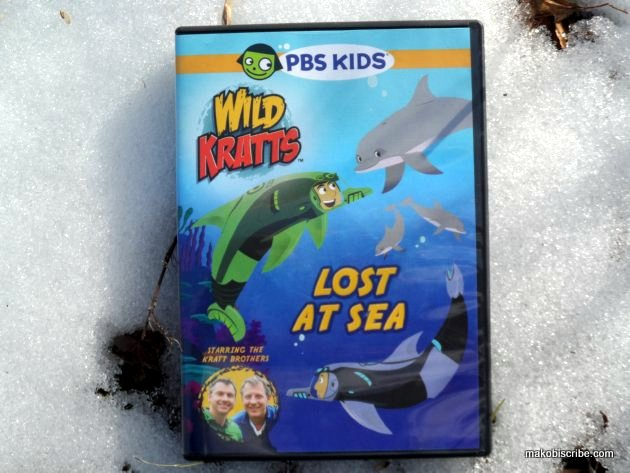 What Are The Best DVDs For Young Children?