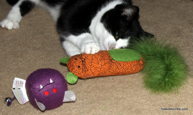 Cat Toys From Pet Smart