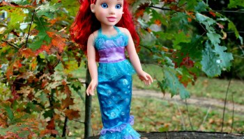 Which Disney Princess Dolls Are Your Favorite?