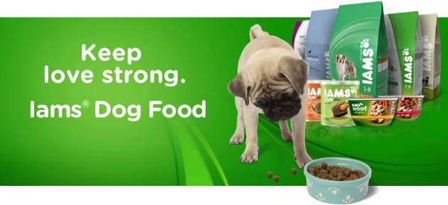 Help Donate Food for Pets in Need