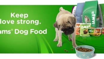 Help Donate Food for Pets in Need And #KeepLoveStrong