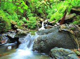 Top Five Things To Do In Puerto Rico