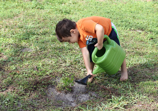 Beginners Guide to Gardening with Kids