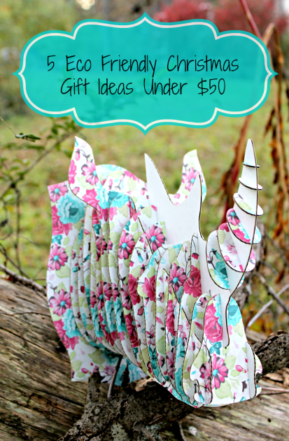 5 Eco Friendly Christmas Gift Ideas Under$50