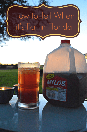 How to Tell when it's fall in florida pin