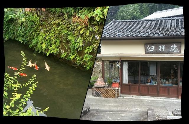鯉と古い建物