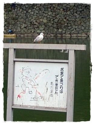 名古屋城の看板に留まる鳥