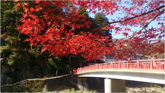 香嵐渓の赤い紅葉と待月橋