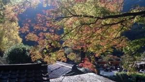 香嵐渓の紅葉と屋敷