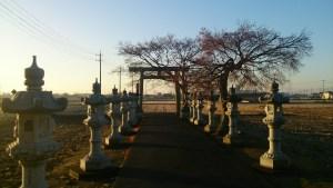 初詣_近隣の神社_灯篭と出口の鳥居