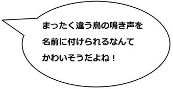 鳳来寺山の湯谷温泉の文乃コメント