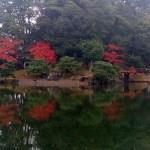 彦根城庭園玄宮園の池に映る木々と紅葉