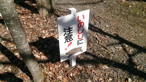グリーンピア春日井のいのしし注意看板