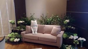 結婚式場のソファーとヌイグルミ