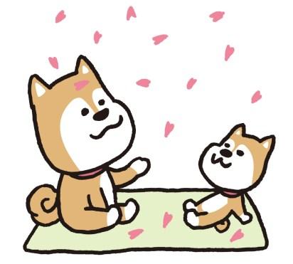 イヌ動画イラスト桜