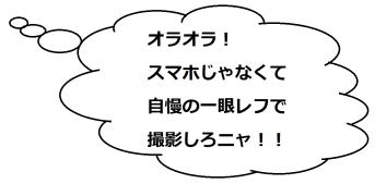 墨俣城2のミケコメ01