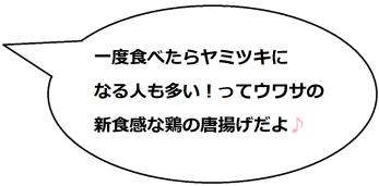 名古屋の手羽先の文乃コメ