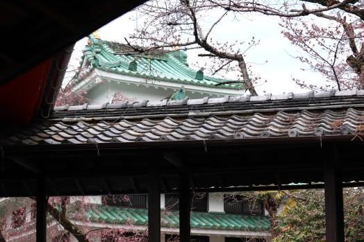 龍泉寺の城02