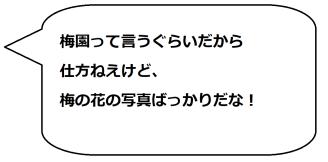 安八梅園の一文字コメ02