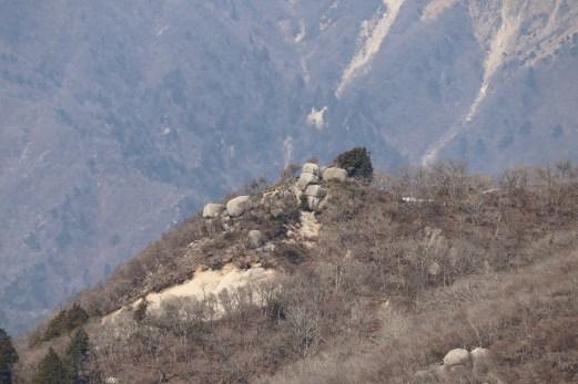 御在所14の望湖台から見えた奇岩01