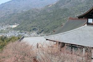 将軍塚の青龍殿の展望台を見下ろす