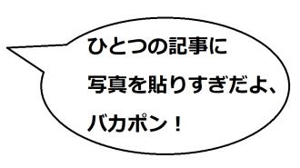 鳴門の文乃コメ3