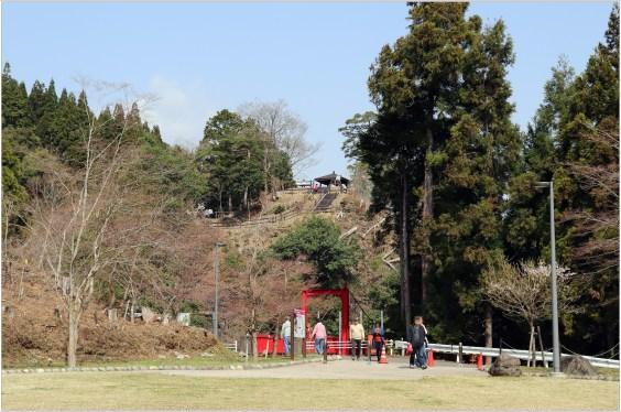淡墨桜4のハイライト1-1