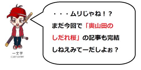 奥山田桜3の一文字コメ1