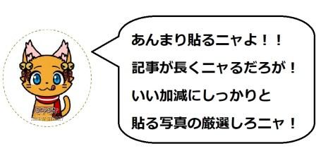 淡墨桜3のミケコメ1